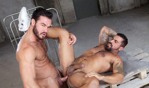 hairy-gay-hardcore-fuck